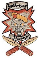 U.S. Army Special Forces 2nd Battalion 19th Special Forces Group SOTA patch
