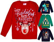 Kids Christmas Jumper Girls Boys Xmas Cotton Sweatshirt Pull Over Top 2 - 6 Yrs