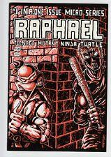 Raphael #1 Teenage Mutant Ninja Turtles TMNT 1985 1st Casey Jones NM 9.4 BEAUTY