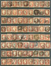 1841 1d red-brown SCARCE group 166 examples Plates 11 to 142  Cat £4980