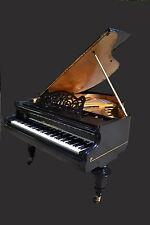 Bosendorfer  grand  piano & Free  Steinway  bench