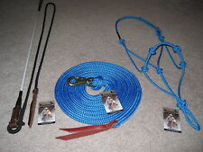THOMEY HORSE HALTER LEAD & STICK FITS PARELLI CA REIS ~ Blue & White