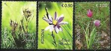 Kosovo 2017. Flora. Aster Albanicus, Tulipa Luanica, Solenantë Krasniqi. Set MNH