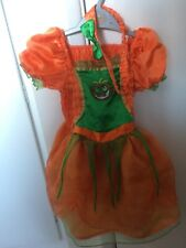 Halloween Pumpkin Fancy Dress Costume Age 2-3Tu