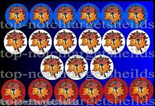 F-14 PINBALL (21)  Target Cushioned Pinball Armour Decals