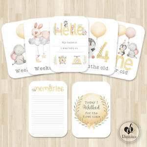 Unisex Milestone Cards, Animals cards,  Photo props, 40 cards, 300gsm