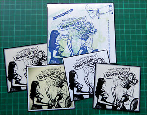 ADAM and the ANTS, Exclusive Set of FIVE Glossy Vinyl Promo Stickers, PUNK ROCK