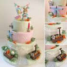 Peter Rabbit themed cake Toppers / Edible Sugar Cake Decoration