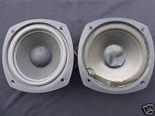Reparatur Sickenerneuerung 20cm Peerless Bass aus Orbid