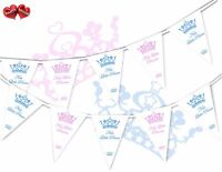 Welcome New Baby Little Prince Princess Bunting Banner 16 flags Gender Reveal