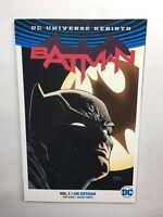 Batman  Dc Universe Presents  Vol 1  I am Gotham   Dc TPB Novel