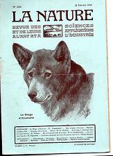 La Nature N°2126 - Fév.1914 - Revue des sciences -  Le Dingo d'Australie