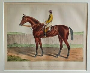 1880 Antique Horse Racing Print ISONOMY Goodwood & Gold Cup & Vase Great Ebor