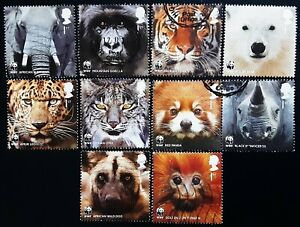 GB 2011 50th Anniversary Of WWF World Wildlife Fund Used Off Paper Set