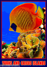 Turks and Caicos Islands Coral Reef 2 Caribbean Travel Advertisement Art Poster