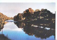 Northumberland Postcard - River North Tyne - Near Greystead    MB2825