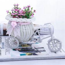 Excellent conteneur blanc de panier de fleur de vélo de tricycle pour la fleur I