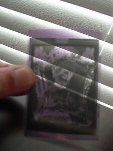 Unique Original Vintage Shirley Temple Photograph Film Negative Kodak TMX 6052 4
