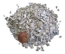 2,00 EUR/ kg Conchas de mar 2,5kg