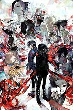 "Tokyo Ghoul -Manga Series Sui Ishida Anime Fabric poster 20""x 13"" Decor 13"