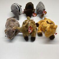 Ty Beanie Babies Whisper Ants Spike Tiptoe Twigs Roam Vintage Jungle Lot Of 6