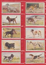 SANDERS  BROS.  ( CUSTARD )  -  RARE  SET  OF  20  DOGS  CARDS  -  1926