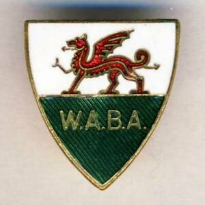 old WELSH BOXING Association PIN Badge WALES Box Boxe