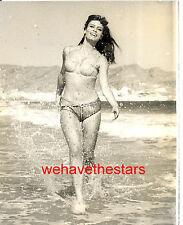 Vintage Marisa Mell SEXY BUSTY SWIMSUIT PINUP '65 CANDID PRESS Portrait