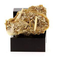 Siderite, Baryte, Quartz, Pyrite. 681.9 ct. Mésage Mine, Vizille, France. Rare