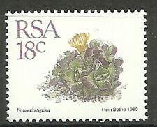 Afrique du sud - Timbre-poste: Succulentes menthe 1989 Mi. 770