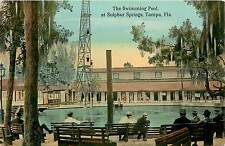 Florida, FL, Tampa, Sulphur Springs, Swimming Pool 1910's Postcard