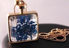Alloy Blue/Gold Real Dried Flower Pendant Necklace w/Free Jewelry Box/Shipping
