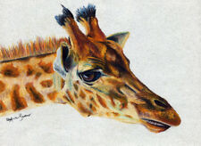 10x8print Giraffe oil pastel painting animal art Andy Currie-Scarr
