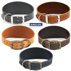 Ancol Whippet Greyhound Lurcher Bridle Leather Dog Collar Timberwolf Heritage