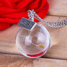 Fashion Glass Ball Real Dandelion Seed Wishing Wish Necklace Long Silver Chain