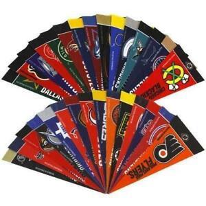 NHL Hockey Complete 30 Team 4x9 Mini PENNANT Banner Flag Set