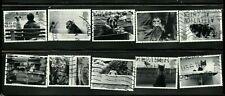 Great Britain 2001 Stamps Scott# 1953-1962, Sg# 2187-2196, Complete Set, Gb-803