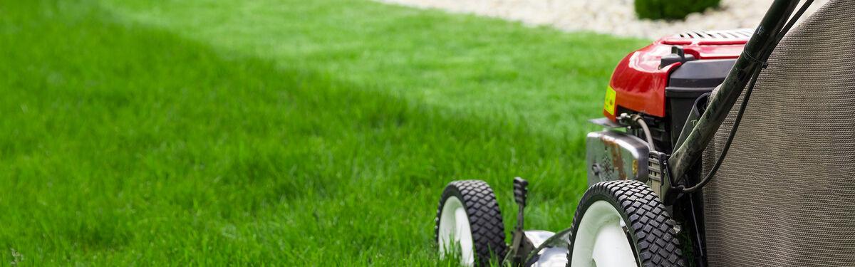 Newbridge Lawnmowers