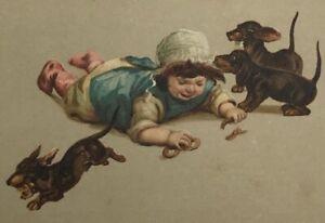 Girl crying Pretzel DACHSHUND Dackel Teckel  Puppy old Dog Cane Chien PC
