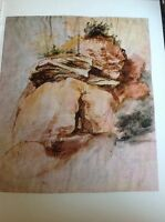 J1-2 Book Plate 6.5 X 8.5 Inches Albert Durer Picture Quarry