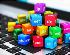 Domain name selection and registration