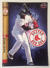 David Ortiz FATHEAD 2014 Player Treadeable 5x7 Graphic w/ Team Logo RED SOX