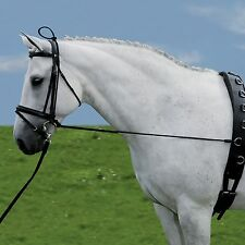 Halsverlängerer, Longierzügel, Ausbinder, Ausbindezügel, Zügel Ausbildung Pony