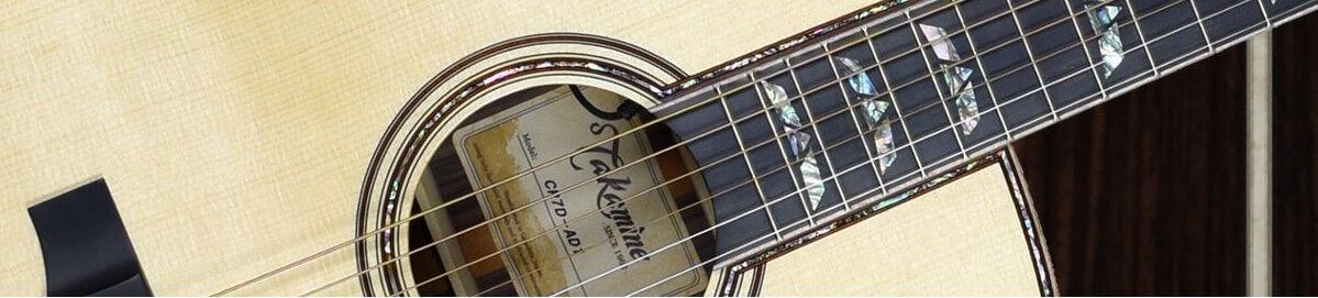 lv-guitars