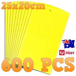Fly trap glue sticky paper, Environmentally Safe fly aphids catcher600 PCS 25*20