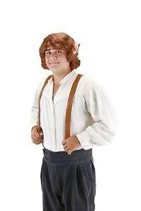 Adult Movie LOTR Lord of the Rings The Hobbit Bilbo Baggins Costume Wig Ears
