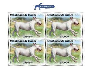 Guinea - 2020 Bull Terrier Dog Breed - 4 Stamp Sheet - GU200205a