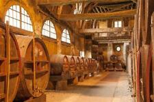 Hard Apple Cider Brewer Brewing Start Up Sample BUSINESS PLAN + MARKETING PLAN