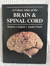 A COLOUR ATLAS OF BRAIN AND SPINAL CORD -  Beautifully Illustrated - Hardcover