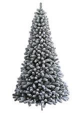 King Of Christmas 6 Foot Prince Flock Artificial Christmas Tree  Unlit Flocked